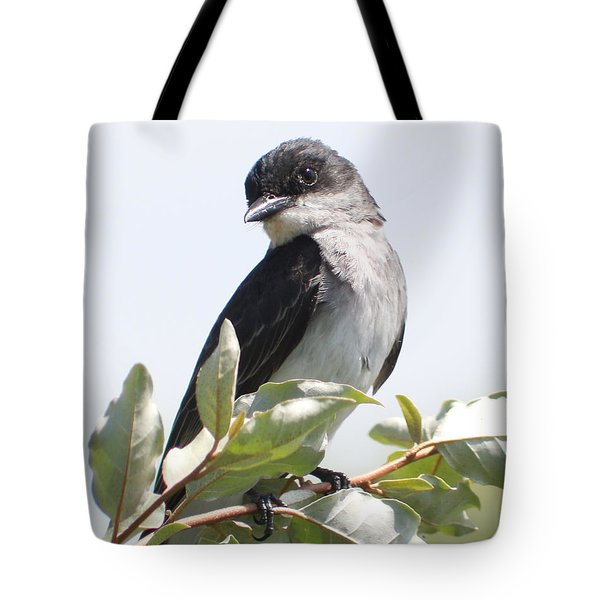 Tote Bag featuring the photograph Eastern Kingbird by Anita Oakley