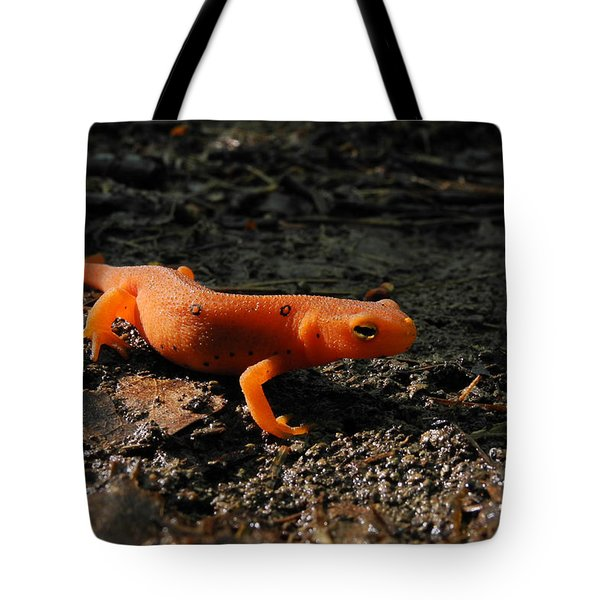 Eastern Newt Red Eft Tote Bag