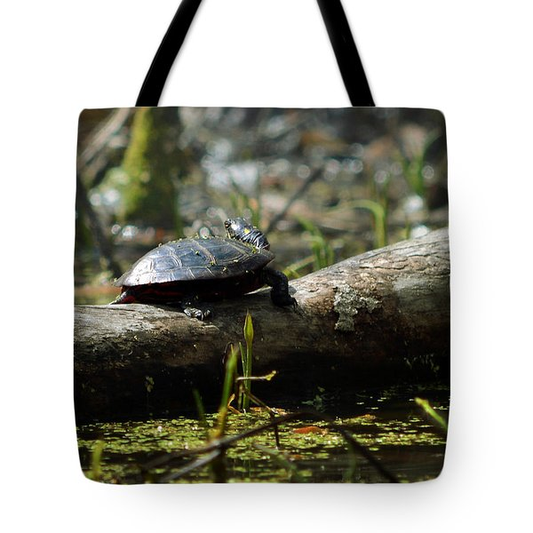 Eastern Painted Turtle Tote Bag