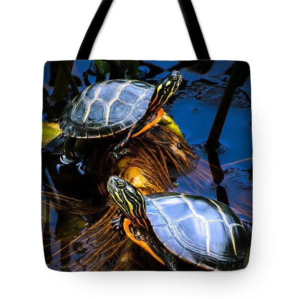 Eastern Painted Turtles Tote Bag by Bob Orsillo