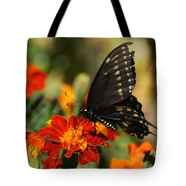 Eastern Swallowtail On Marigold Tote Bag