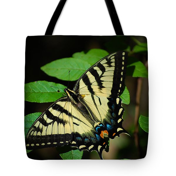 Eastern Tiger Swallowtail Tote Bag by Bianca Nadeau