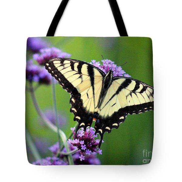 Eastern Tiger Swallowtail Butterfly 2014 Tote Bag