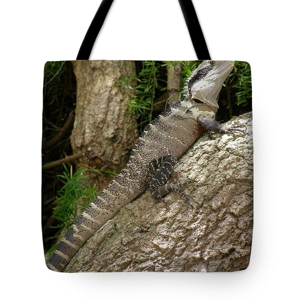 Tote Bag featuring the photograph Eastern Water Dragon by Bev Conover