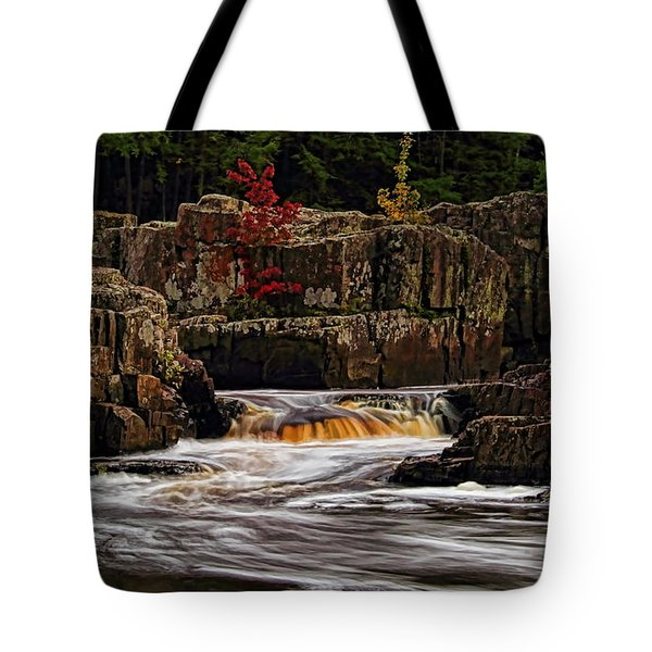 Tote Bag featuring the photograph Waterfall Under Colored Leaves by Dale Kauzlaric
