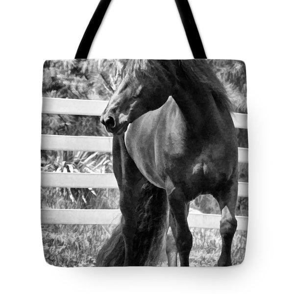 Ebony Beauty Tote Bag