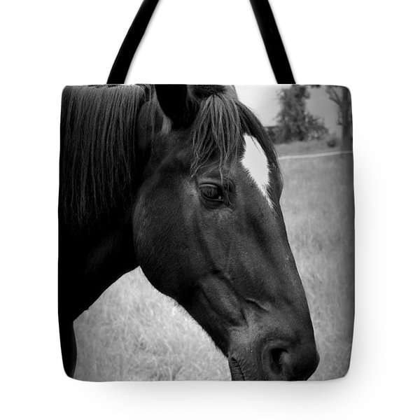 Tote Bag featuring the photograph Ebony Beauty by Laurie Perry