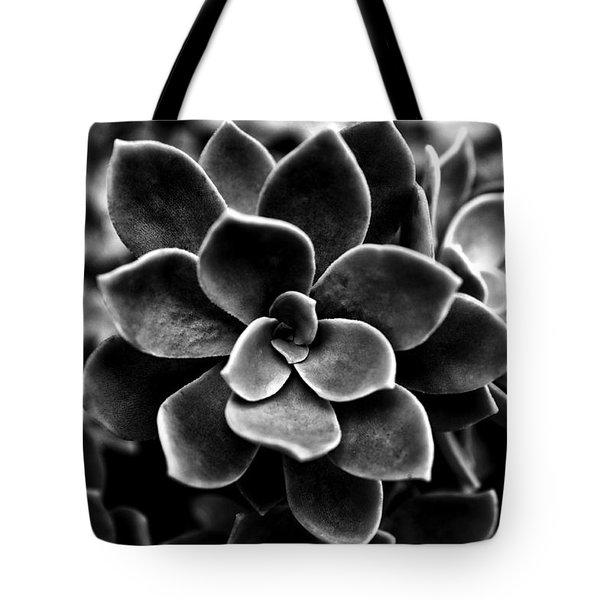 Echeveria Elegans Tote Bag by Fabrizio Troiani