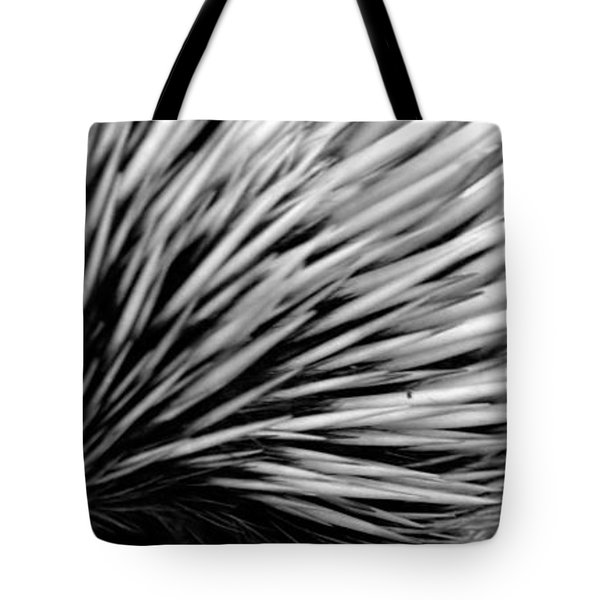 Tote Bag featuring the photograph Echidna by Miroslava Jurcik