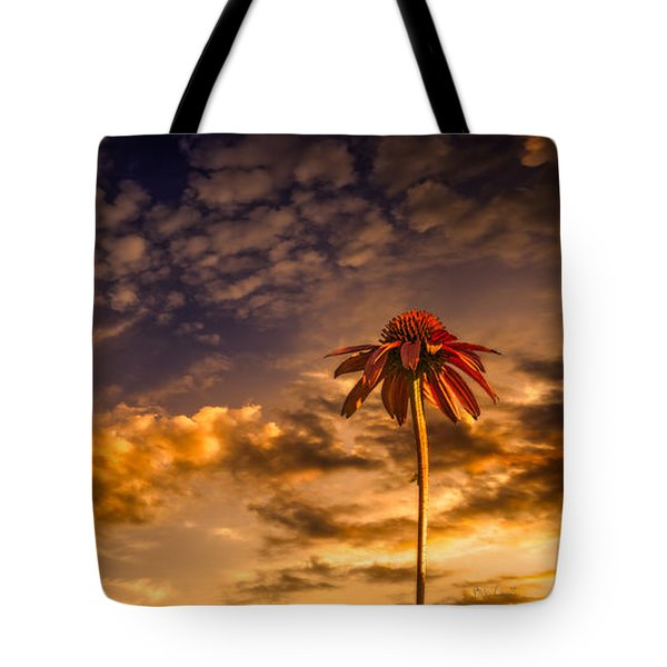 Echinacea Sunset Tote Bag by Bob Orsillo