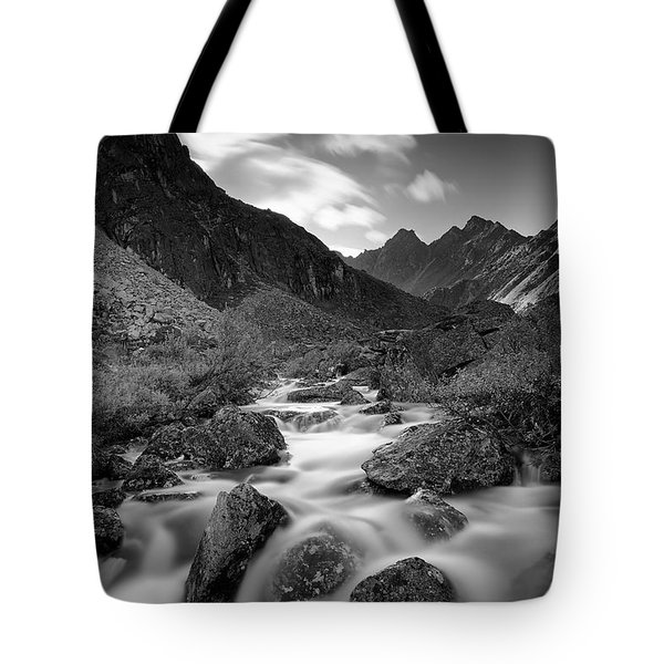 Echo Tote Bag by Ed Boudreau