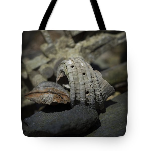 Tote Bag featuring the photograph Ecphora Gardnerae by Rebecca Sherman