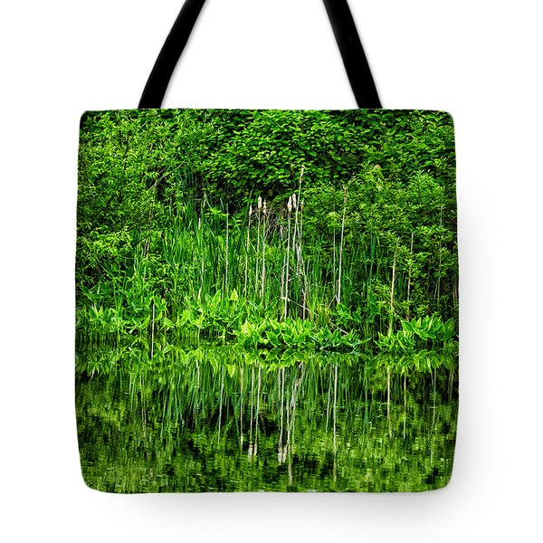 Eden 38 Oil Tote Bag