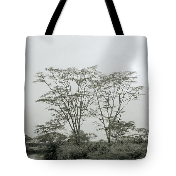 Eden Tote Bag by Shaun Higson