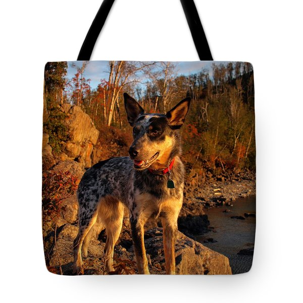 Tote Bag featuring the photograph Edge Of Glory by James Peterson