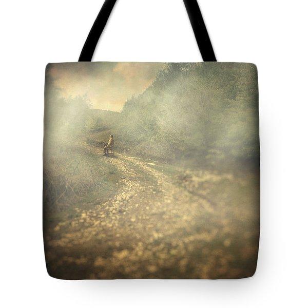 Edge Of The World Tote Bag by Taylan Apukovska