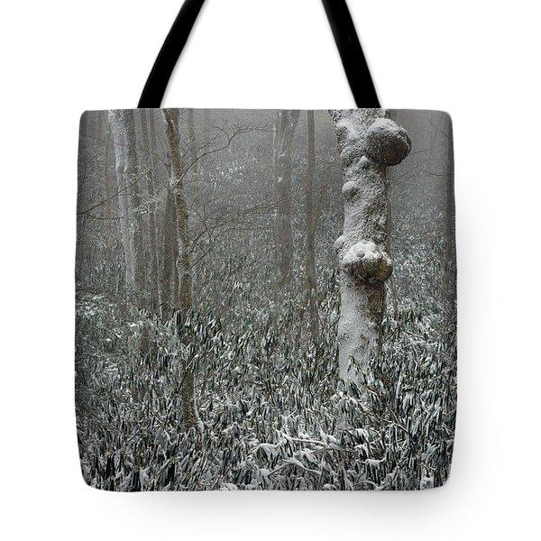 Eerie Forest Winter Tote Bag by John Haldane