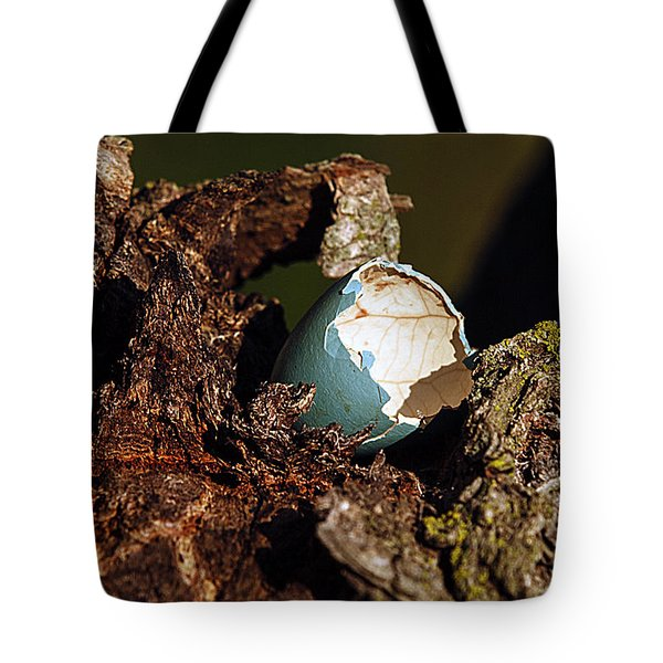 Tote Bag featuring the photograph Eggs Of Nature 1 by David Lester