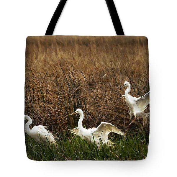 Egret Landing Tote Bag by Belinda Greb