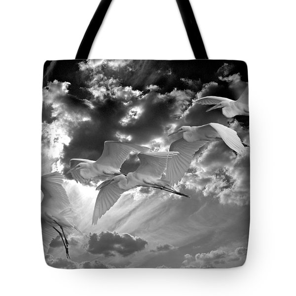 Egrets In Succession Bw Tote Bag