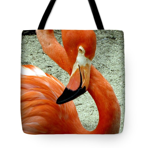 Figure Eight Flamingo Tote Bag