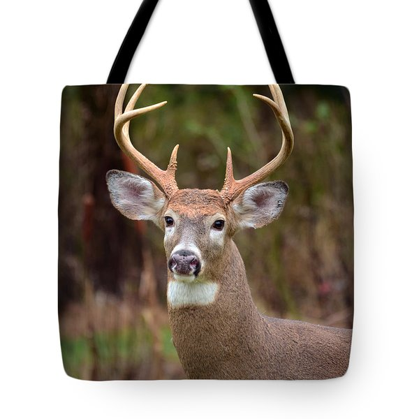 Eight Points Of Awesome Tote Bag
