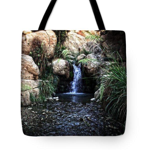 Ein Gedi Springs Tote Bag by Doc Braham