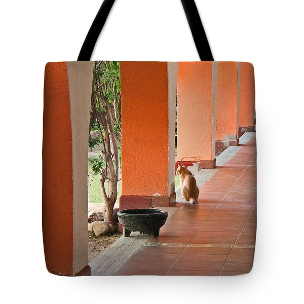 Tote Bag featuring the photograph El Gato by Marcia Socolik