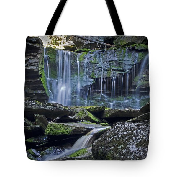 Elakala Falls Number 1 Tote Bag by Shelly Gunderson