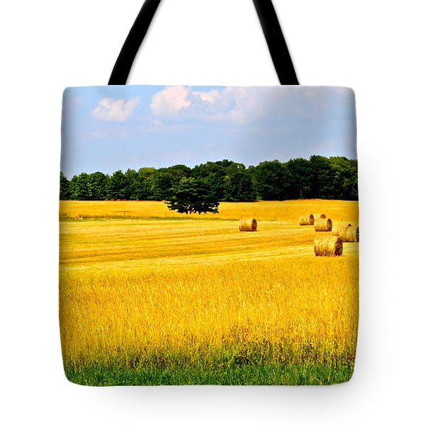 Eldorado Tote Bag by Frozen in Time Fine Art Photography