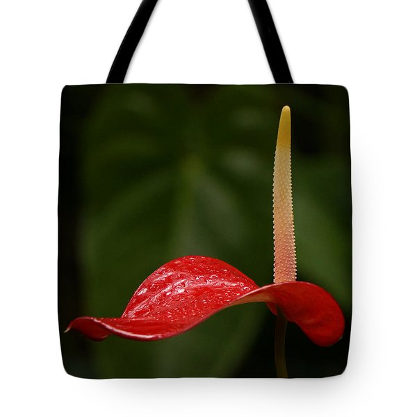 Tote Bag featuring the photograph Elegance by Inge Riis McDonald