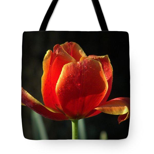 Elegance Of Spring Tote Bag by Karen Wiles