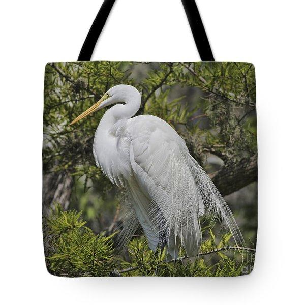 Elegance Posed In Tree Tote Bag