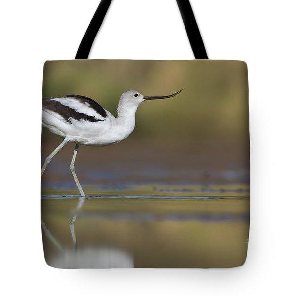 Elegant Avocet Tote Bag