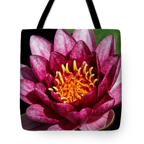 Elegant Lotus Water Lily Tote Bag by Denyse Duhaime