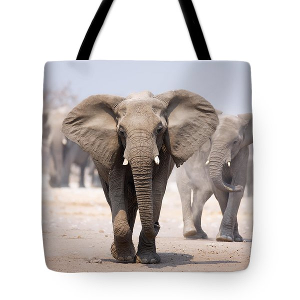 Elephant Bathing Tote Bag