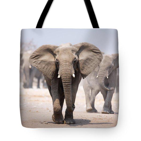 Elephant Bathing Tote Bag