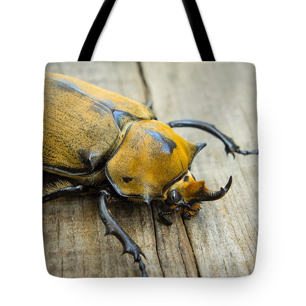 Elephant Beetle Tote Bag by Aged Pixel