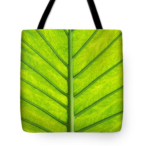 Elephant Ear Taro Leaf Pattern Tote Bag by Tim Gainey