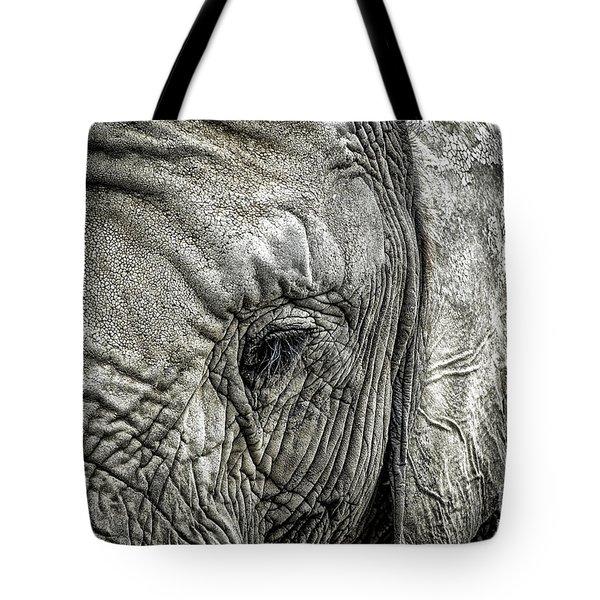 Elephant Tote Bag by Elena Elisseeva