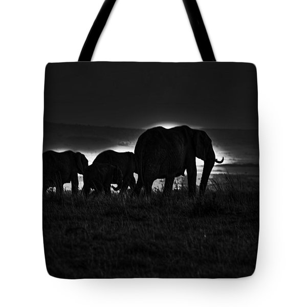 Elephant Family Tote Bag by Aidan Moran