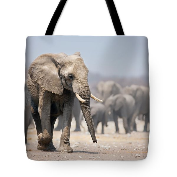 Elephant Feet Tote Bag