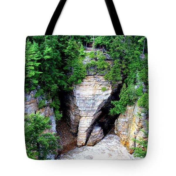 Elephant Head Rock Tote Bag by Patti Whitten