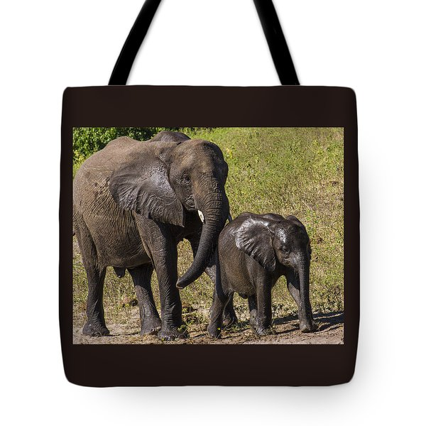 Elephant Mom And Baby Tote Bag
