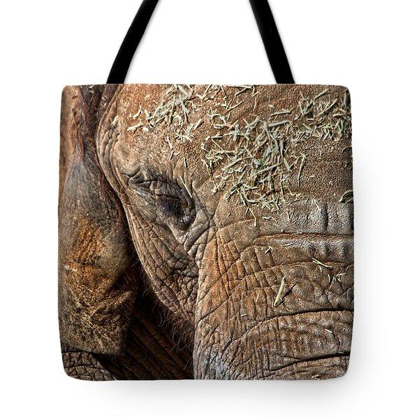 Elephant Never Forgets Tote Bag by Miroslava Jurcik