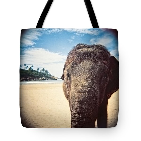 Tote Bag featuring the photograph Elephant On The Beach by Carol Whaley Addassi