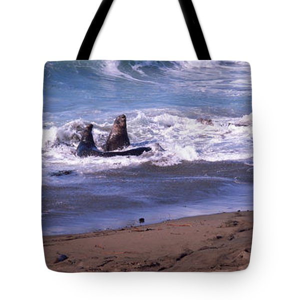 Elephant Seals In The Sea, San Luis Tote Bag