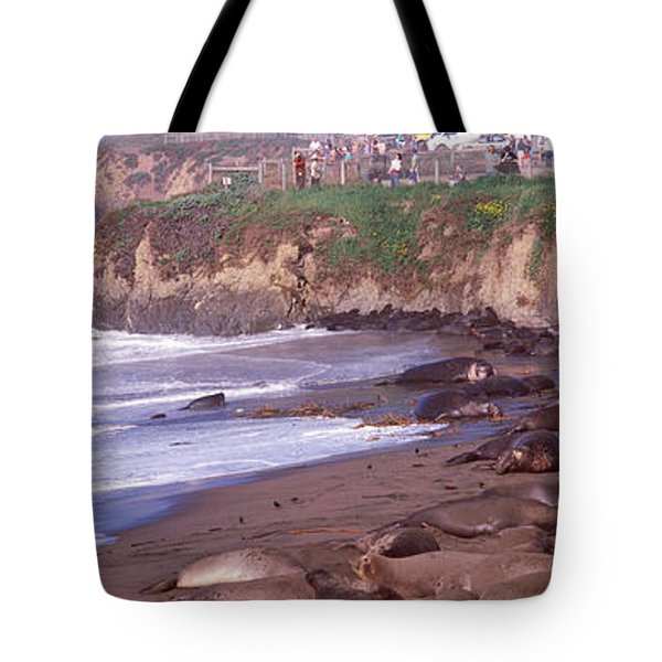 Elephant Seals On The Beach, San Luis Tote Bag