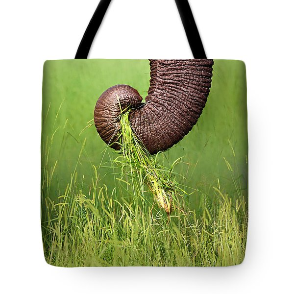 Elephant Trunk Pulling Grass Tote Bag