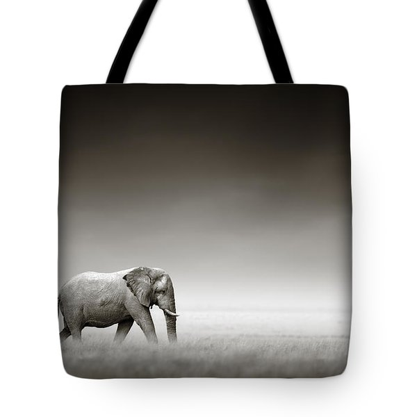 Elephant With Zebra Tote Bag